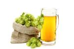 Découvrez 10 bières bien houblonnées à boire cet été