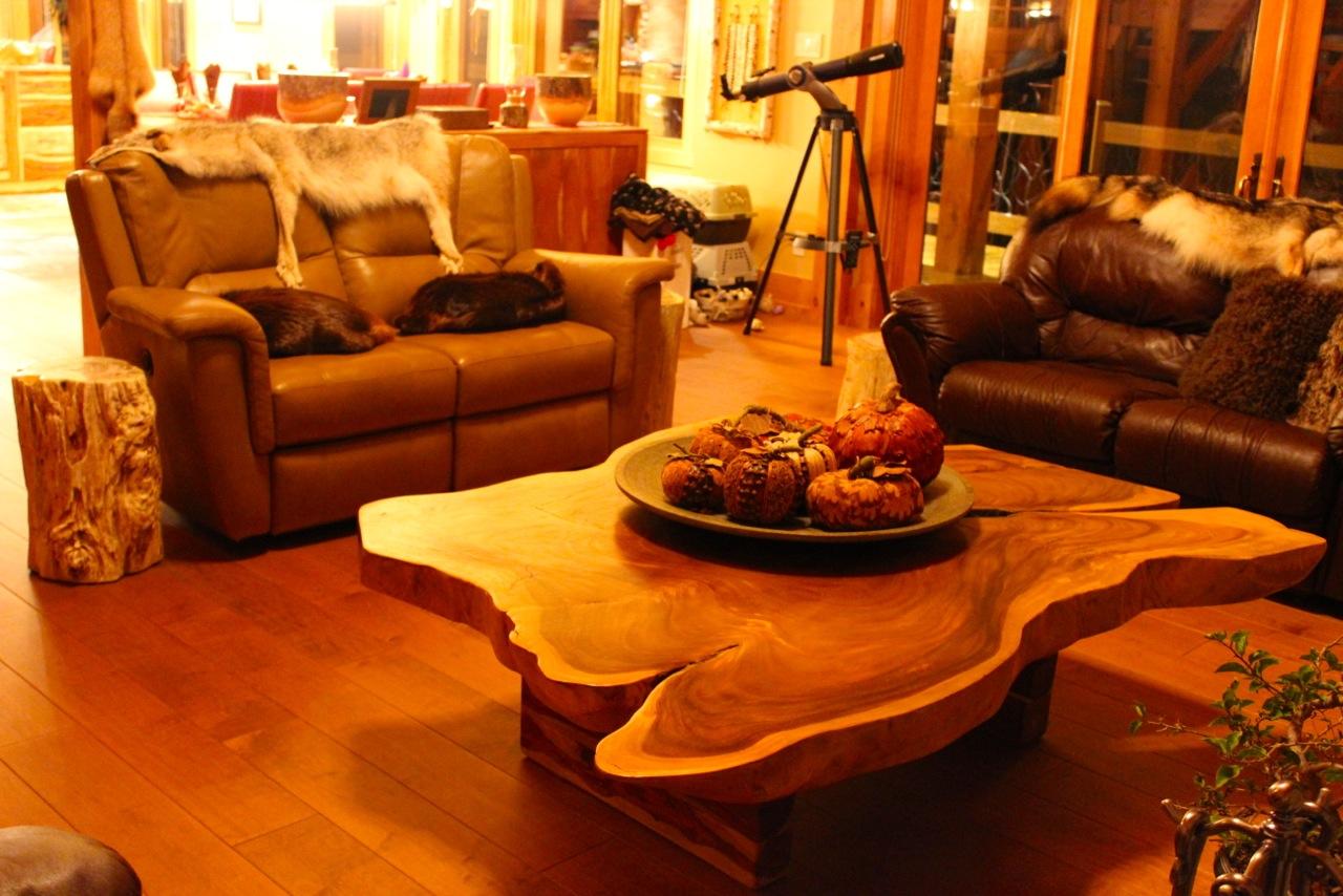 Les nouveaux voyageurs s vader dans le confort de chez for Meuble artemano