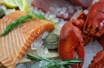 Poissons, crustacés, mollusques. Comment les choisir?