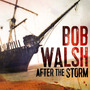Bob Walsh - After The Storm