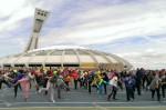 Une centaine d'activités autour de la Journée internationale de la danse