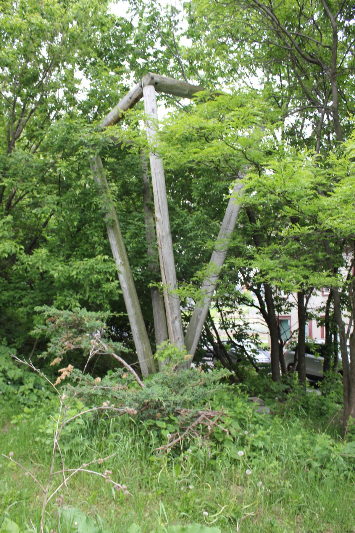 Ce qu'il reste de l'Îlot Fleurie | Visite libre