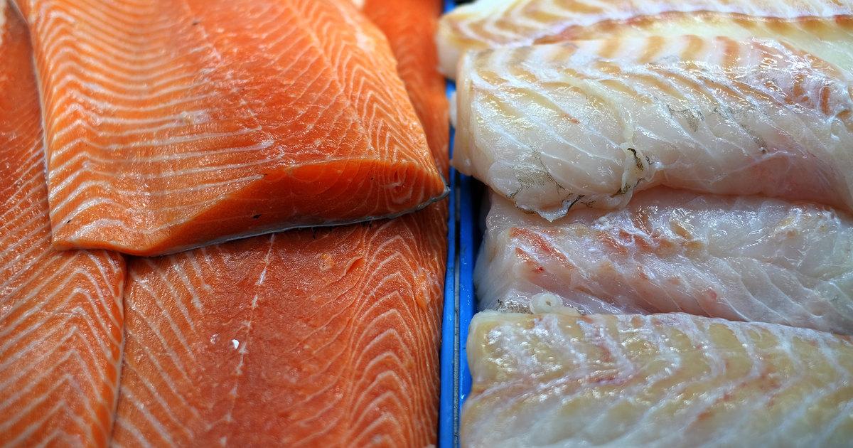 Ogm algue rouge et hausse des prix les d fis du saumon - Prix du saumon ...