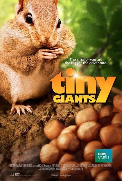 Tiny Giants 3D – IMAX